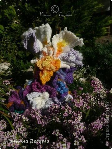 3 мои работы вместе -проект ландшафта , его исполнение- высадка растений  и ангелы  фото 32