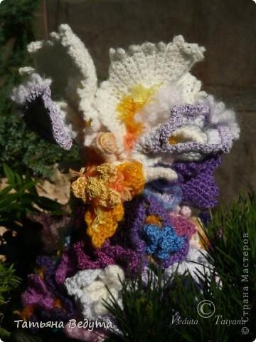 3 мои работы вместе -проект ландшафта , его исполнение- высадка растений  и ангелы  фото 30
