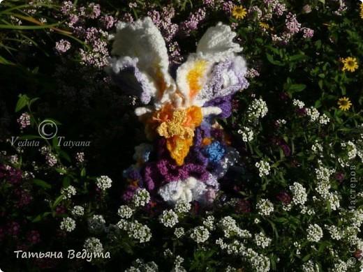 3 мои работы вместе -проект ландшафта , его исполнение- высадка растений  и ангелы  фото 28
