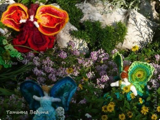3 мои работы вместе -проект ландшафта , его исполнение- высадка растений  и ангелы  фото 11