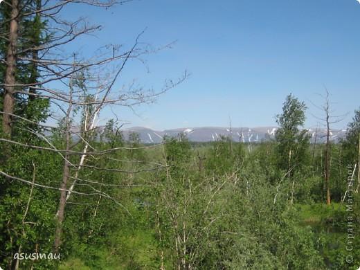 Здравствуйте , дорогие жители Страны !!! Сегодня у нас настоящее лето , +25 , погода замечательная ! А мы решили прокатиться на турбазу , поели шашлыков и погуляли на свежем ввоздухе.Специально взяла фотоаппарат , что бы показать ВАМ красоту северной природы. фото 17
