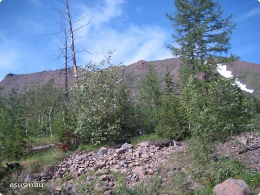 Здравствуйте , дорогие жители Страны !!! Сегодня у нас настоящее лето , +25 , погода замечательная ! А мы решили прокатиться на турбазу , поели шашлыков и погуляли на свежем ввоздухе.Специально взяла фотоаппарат , что бы показать ВАМ красоту северной природы. фото 27