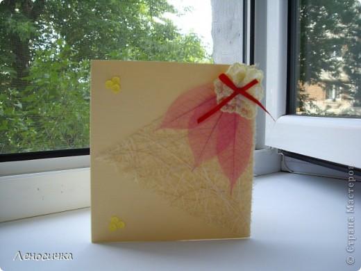 Мои открыточки фото 2