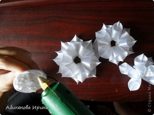 Приветствую всех жителей СТРАНЫ! Хотела рассказать об одном небольшом эксперименте, в результате которого получился цветочек. фото 6