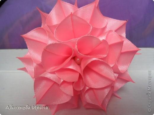 Приветствую всех жителей СТРАНЫ! Хотела рассказать об одном небольшом эксперименте, в результате которого получился цветочек. фото 11