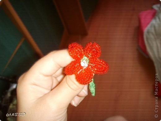 просто цветочек фото 3