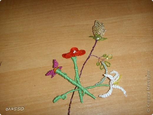 просто цветочек фото 5