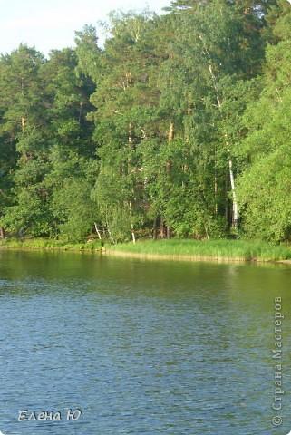 Озеро Еловое фото 4