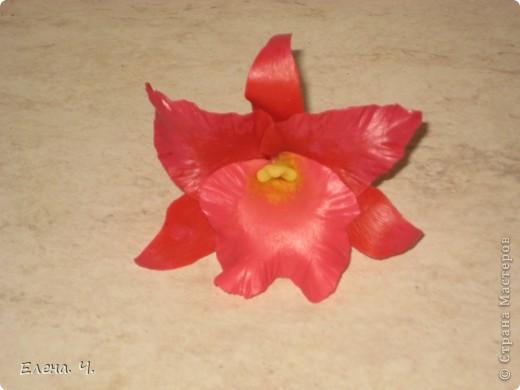 Оцените мою орхидею Каттлея, пожалуйста. Катеры самодельные, фактурила на стеклянной доске, края спицей, тонировала краской масляной. фото 1