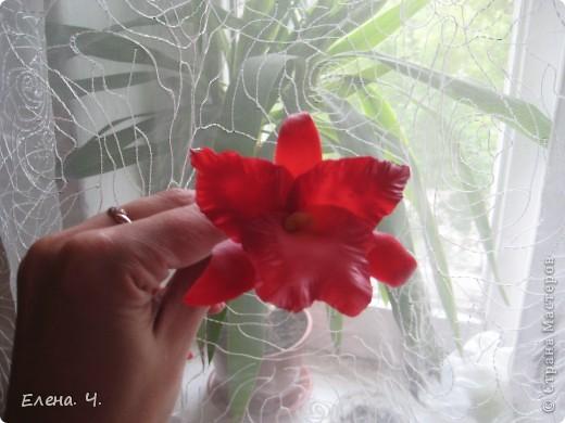 Оцените мою орхидею Каттлея, пожалуйста. Катеры самодельные, фактурила на стеклянной доске, края спицей, тонировала краской масляной. фото 2