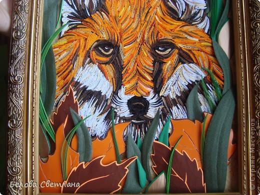 Здесь МК,который я сделала для Хомячка! http://homyachok-scrap-challenge.blogspot.com/2012/07/blog-post_19.html  Давно мечтала сделать какое-нибудь животное петельчатым квиллингом....!!!! Любовалась в Стране на тигров, леопардов, кошечек... были и лиса и зебра и лев и олень, собаки и много-много других красавцев...!!! Решилась и я... фото 9
