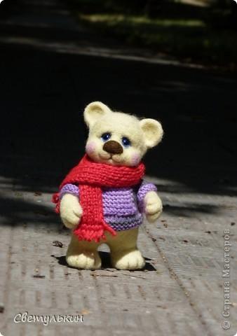 Мишка Мартин - детектив фото 2
