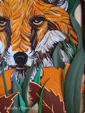 Здесь МК,который я сделала для Хомячка! http://homyachok-scrap-challenge.blogspot.com/2012/07/blog-post_19.html  Давно мечтала сделать какое-нибудь животное петельчатым квиллингом....!!!! Любовалась в Стране на тигров, леопардов, кошечек... были и лиса и зебра и лев и олень, собаки и много-много других красавцев...!!! Решилась и я... фото 8