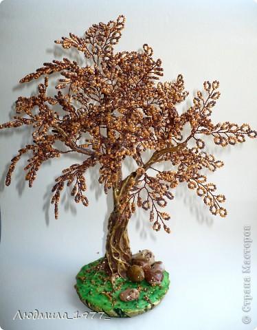 """Дерево """"Карамелька"""" фото 1"""