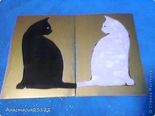 Карточка №1  фото 3