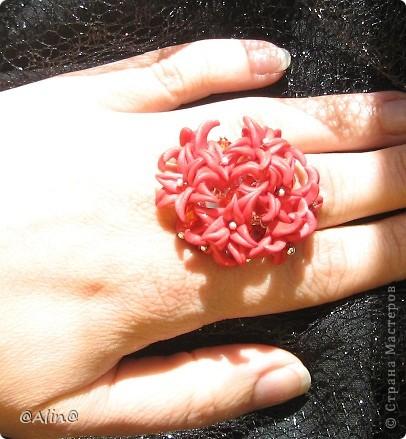 Это кольцо фотографировала сноха. фото 2