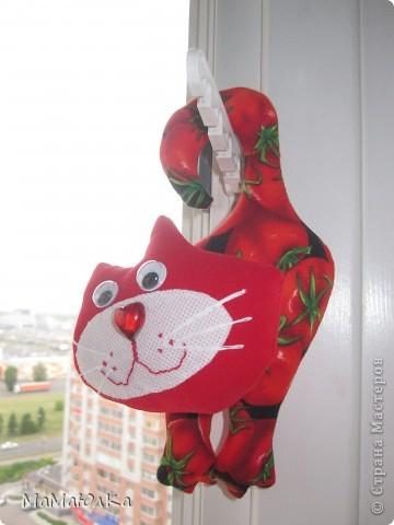 Здравствуйте! Расскажу вам интересную историю, которая произошла сегодня с нами.  К нам в окно постучался кот. А забрался он к нам по телевизионной антенне на высоте 15 этажа!!!! Это он проббирается  к открытому окну.  фото 3
