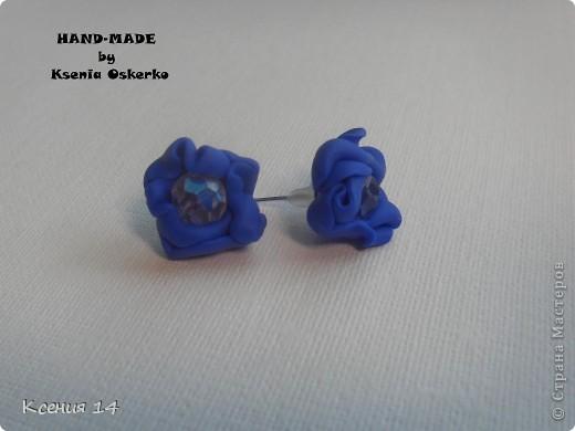 Бижутерия из полимерной глины фото 9