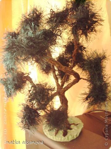 Добрый день, всем мастерам и мастерицам. Ну уж очень мне понравилось делать деревья из травки. фото 4