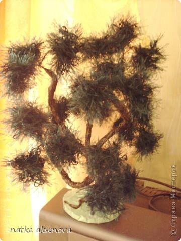 Добрый день, всем мастерам и мастерицам. Ну уж очень мне понравилось делать деревья из травки. фото 5