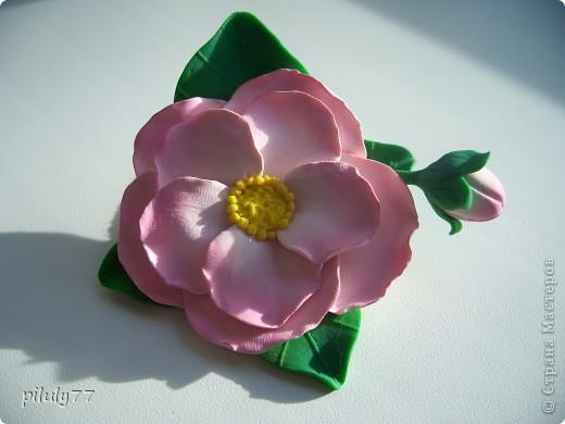 украшения из полимерной глины фото 13
