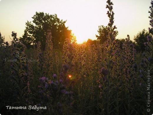 """моя работа """"Встреча солнца ..."""" фото 6"""