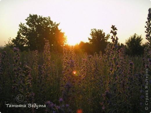"""моя работа """"Встреча солнца ..."""" фото 2"""