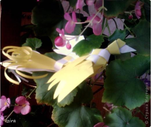 Просматривала Мастер Классы и натолкнулась на вот такую плетеную птицу у Татьяны Просняковой http://stranamasterov.ru/node/20234?c=favorite, сразу взяла бумагу, ножницы, и вот получила такую красавицу фото 4