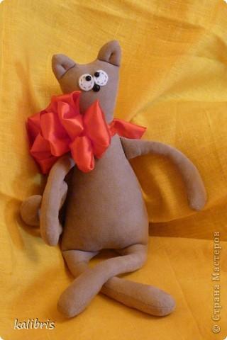 Представляю Вашему вниманию вот такую милую и скромную кошечку, зовут Мурррррка!  просим нас не обижать, потому как мы создание нежное и мягкое, НО можем выпустить и коготки!!!!!!!!  Итак, немного о Муррррррке.  фото 3