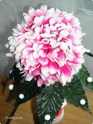 Розовый топиарий фото 2