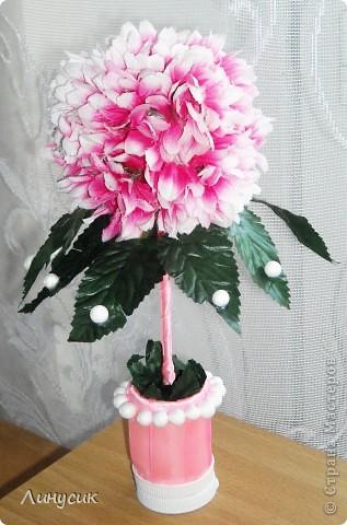 Розовый топиарий фото 1