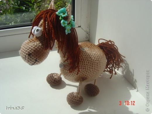 лошадка Незабудка фото 1