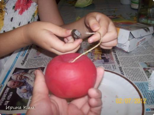 """Это моя вторая работа на замечательный конкурс Миши и Юли http://stranamasterov.ru/node/377886?c=favorite , называется """"Райские яблоки"""". фото 5"""