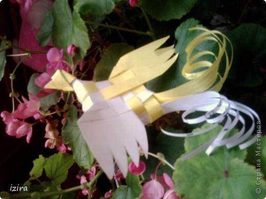 Просматривала Мастер Классы и натолкнулась на вот такую плетеную птицу у Татьяны Просняковой http://stranamasterov.ru/node/20234?c=favorite, сразу взяла бумагу, ножницы, и вот получила такую красавицу фото 3