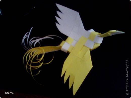 Просматривала Мастер Классы и натолкнулась на вот такую плетеную птицу у Татьяны Просняковой http://stranamasterov.ru/node/20234?c=favorite, сразу взяла бумагу, ножницы, и вот получила такую красавицу фото 6