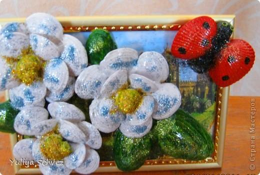 """Приветствую всех гостей своей странички. Продолжение моей морской темы""""что еще можно сделать с ракушек"""". Вот получились ромашки и божья коровка)))))))))) фото 2"""