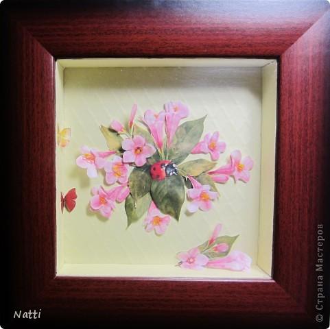 Цветы и бабочки фото 1