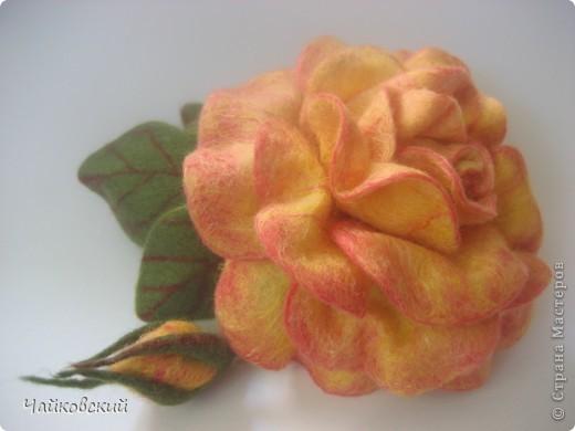 Цветы из шерсти фото 1
