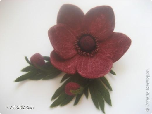 Цветы из шерсти фото 30