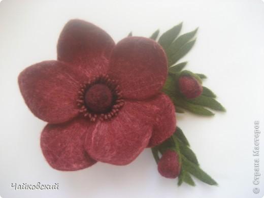 Цветы из шерсти фото 33