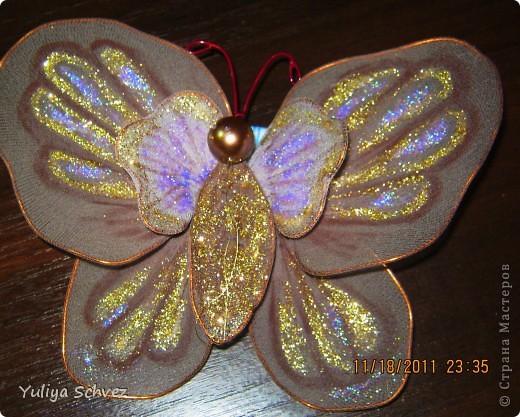 Вот такие бабочки с капрона у меня получились! Очень старалась, работой осталась довольна. В ход пошли капроновые колготы, крылышки раскрашивала косметическим карандашем+блестки наклеяла. Розовую бабочку красила краской для яиц, замочила на 2 часа и вот такой цвет получился.Рада всем кто заглянул! фото 5