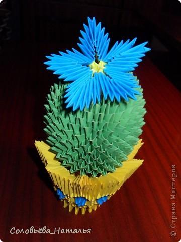 Еще один кактус