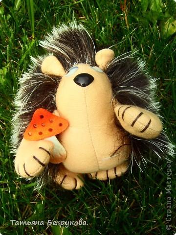 Вот  решила  дать Вам чуть отдохнуть и от сумок и от кукол.. но что бы совсем меня не забыли и не было скучно..Вам и сказочка в  ухо.. игрушки сшиты  мной.. и сейчас  и скоро поедут в лес.. отдых у них будет на природе..  Девочки  я до 14  июля  буду  в лесу на озере Селигер...   Вот иду я по поляне, гуляю. Грибы да ягоды собираю.. фото 8