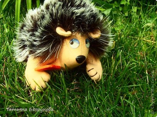 Вот  решила  дать Вам чуть отдохнуть и от сумок и от кукол.. но что бы совсем меня не забыли и не было скучно..Вам и сказочка в  ухо.. игрушки сшиты  мной.. и сейчас  и скоро поедут в лес.. отдых у них будет на природе..  Девочки  я до 14  июля  буду  в лесу на озере Селигер...   Вот иду я по поляне, гуляю. Грибы да ягоды собираю.. фото 3