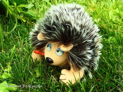 Вот  решила  дать Вам чуть отдохнуть и от сумок и от кукол.. но что бы совсем меня не забыли и не было скучно..Вам и сказочка в  ухо.. игрушки сшиты  мной.. и сейчас  и скоро поедут в лес.. отдых у них будет на природе..  Девочки  я до 14  июля  буду  в лесу на озере Селигер...   Вот иду я по поляне, гуляю. Грибы да ягоды собираю.. фото 1