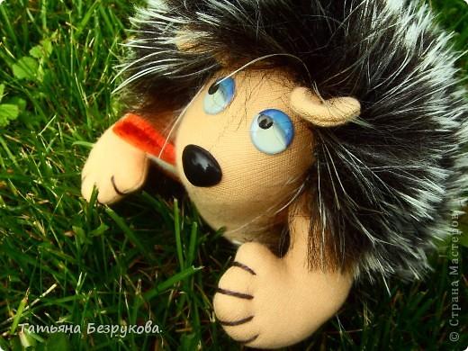 Вот  решила  дать Вам чуть отдохнуть и от сумок и от кукол.. но что бы совсем меня не забыли и не было скучно..Вам и сказочка в  ухо.. игрушки сшиты  мной.. и сейчас  и скоро поедут в лес.. отдых у них будет на природе..  Девочки  я до 14  июля  буду  в лесу на озере Селигер...   Вот иду я по поляне, гуляю. Грибы да ягоды собираю.. фото 9