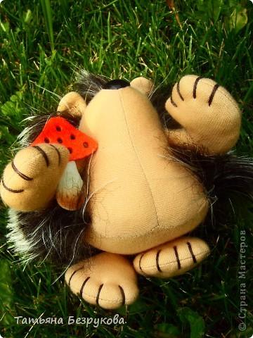 Вот  решила  дать Вам чуть отдохнуть и от сумок и от кукол.. но что бы совсем меня не забыли и не было скучно..Вам и сказочка в  ухо.. игрушки сшиты  мной.. и сейчас  и скоро поедут в лес.. отдых у них будет на природе..  Девочки  я до 14  июля  буду  в лесу на озере Селигер...   Вот иду я по поляне, гуляю. Грибы да ягоды собираю.. фото 7