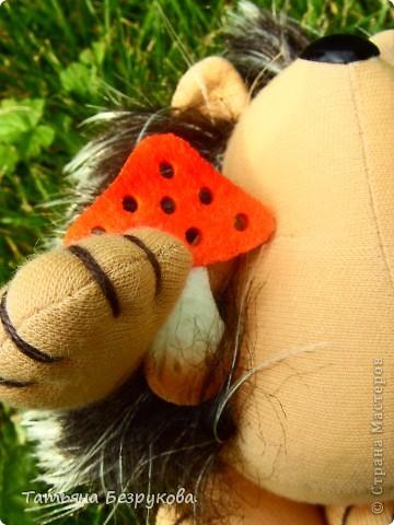 Вот  решила  дать Вам чуть отдохнуть и от сумок и от кукол.. но что бы совсем меня не забыли и не было скучно..Вам и сказочка в  ухо.. игрушки сшиты  мной.. и сейчас  и скоро поедут в лес.. отдых у них будет на природе..  Девочки  я до 14  июля  буду  в лесу на озере Селигер...   Вот иду я по поляне, гуляю. Грибы да ягоды собираю.. фото 2