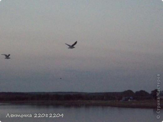 С добрым утром!А ведь оно и правда доброе!Стоило проснуться в 4 утра чтобы увидеть восход солнца!Утро было теплым,немного дул южный ветер,проснулись птицы и встали на крыло. фото 4