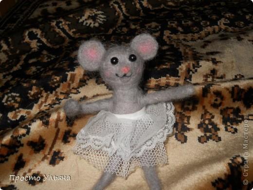 Здравствуйте,сегодня я хочу показать вам мою мышку!!Которую я сваляла на День Рождения моей троюродной сестры,ей исполнилось 18 лет,я решила подарить что-то такое чего нет ни у кого вот и родилась на свет мышаня.Валяля 2-ой раз в жизни что получилось судить вам)) фото 5